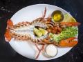 Dingo Lobster Grilled