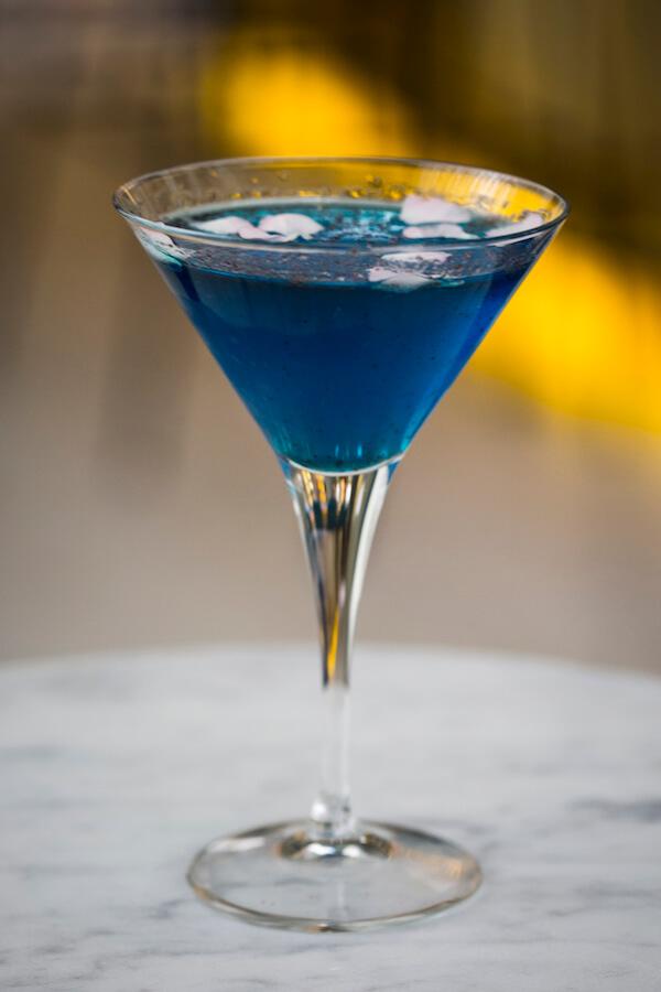 GARRA Blue Hawai