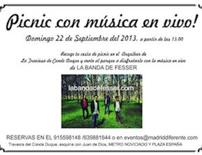 picnic d22