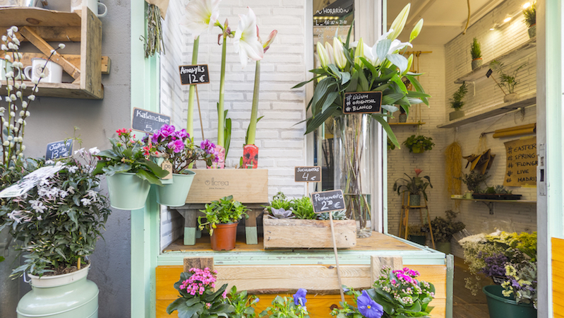 Florea I Tienda de flores en Chamberí