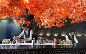 'The Tree', cócteles y pequeños bocados japoneses