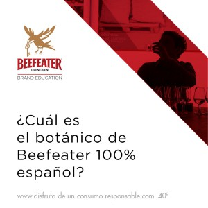Beefeater Gin College_Concurso