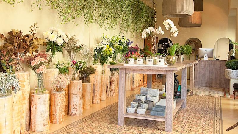 Tiendas de flores y plantas  eef4cebb83834