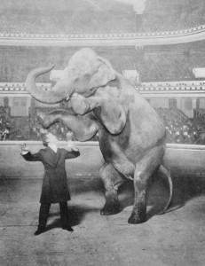 Houdini-y-Jennie-la-elefanta-actuando-en-el-Hippodrome-de-Nueva-York-Library-of-Congress