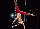 WWW Teatro Circo Price_miniatura