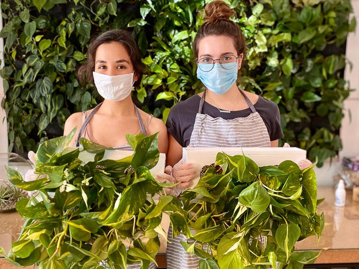 Greenworks Madrid Regala un jardín vertical a quien más quieras