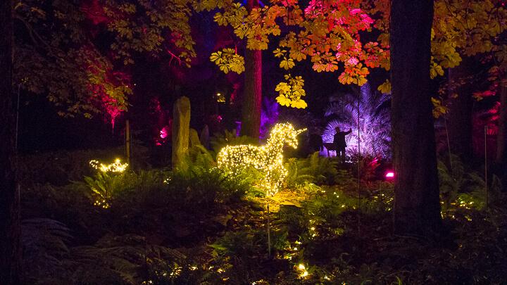 JARDÍN BOTÁNICO LUCES NAVIDAD jardín de las hadas y unicornio