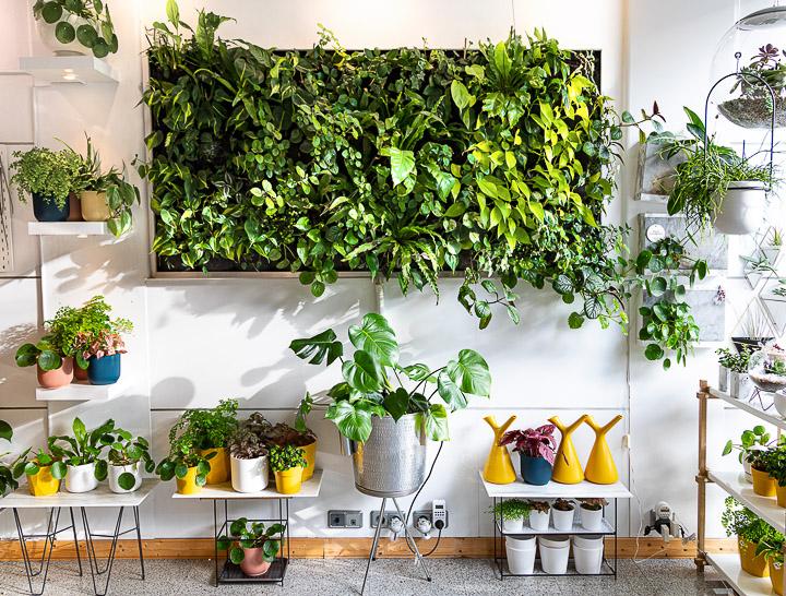 Greenworks, jardines verticales para redecorar tu casa